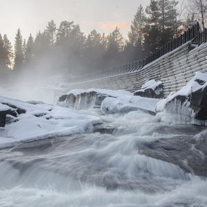 Storforsen Nature Reserve